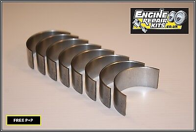 Peugeot/Mini 1.6 16v N14B16/EP6 Big End Con Rod Bearing Set STD • 26£