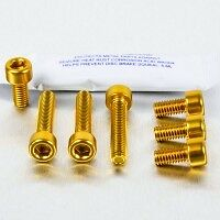 AUDI TT  Mk 1  Alloy Anodized Fuel Flap Bolts GOLD .  WOW .   • 17.99£